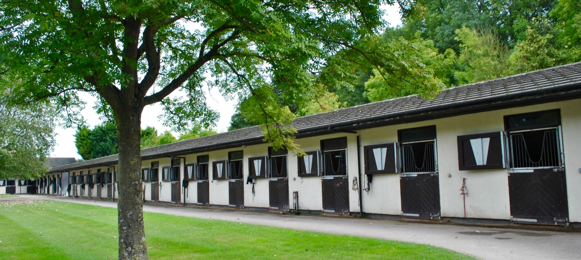 Kings ride racing stables royston