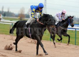 bookiesindex boy winning southwell racehorse