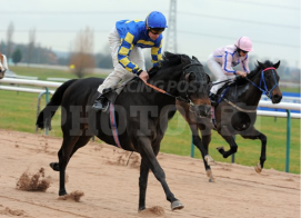 bookiesindex boy winning southwell racehorse